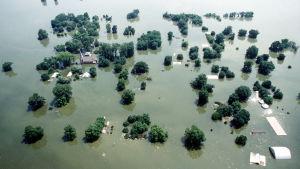 Kaskaskia island 1993 översvämning