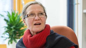 Kirsi Vähäkangas, professor i toxikologi, varnar för att nanosilver kan skada inre organ.