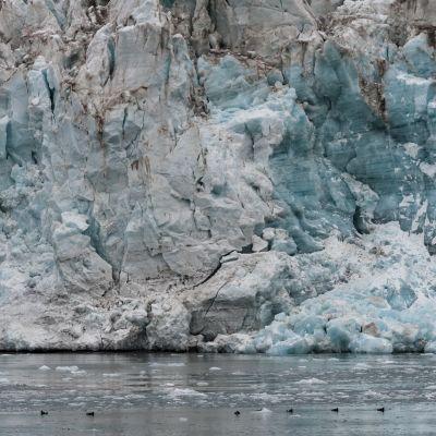 En vägg av is från Esmarkbreen-glaciären på Svalbard.