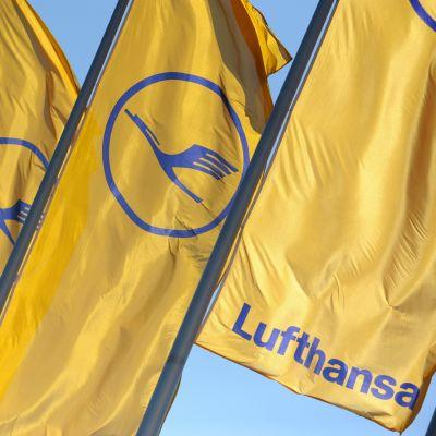Bild av Lufthansa-flaggor