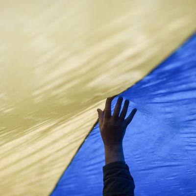 Ukrainska flaggan.