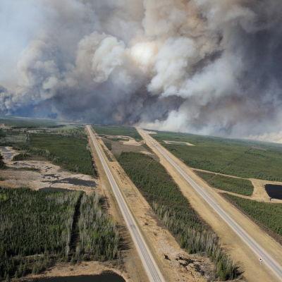 Bild på skogsbranden söder om Fort McMurray, Alberta 5.5.2016