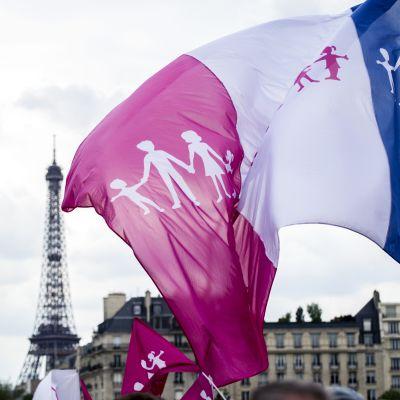 Demonstration mot samkönade äktenskap i Paris