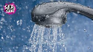 Det rinner vatten ur ett duschmunstycke.