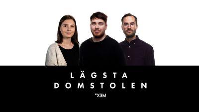 Tintin Råholm, Max Rantakangas och Axel Brink med Lägsta domstolens logga.