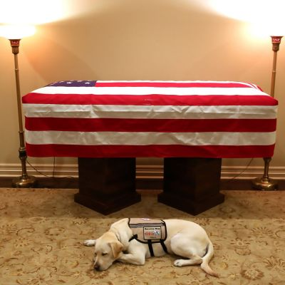 George H.W Bushs kista och hunden Sully  2.12.2018 i Houston, Texas.