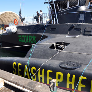 Naturskyddsorganisationen Sea Shepherds fartyg Gojira, som fått namnet efter det japanska namnet på filmen Godzilla, sjösattes i Fremantle i Australien 2010.