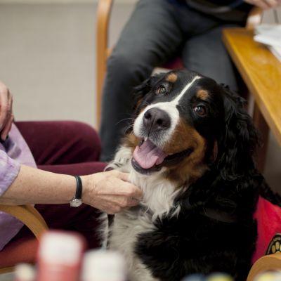 Läshunden Alfa står till tjänst tisdagar från kl. 13-14.