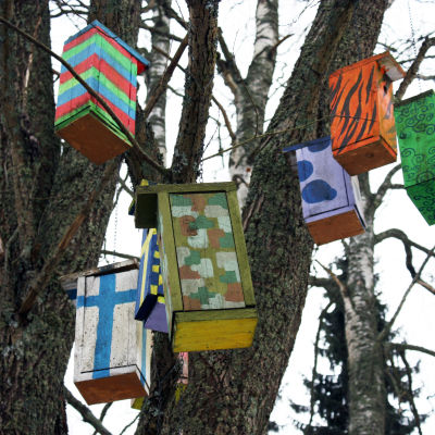 Värikkäitä lasten ja nuorten taidekoulun tuunaamia pönttöjä roikkuu koivussa.