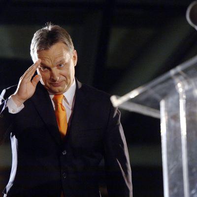 Ungerns premiärminister Viktor Orban utropade sig till segrare i parlamentsvalet.