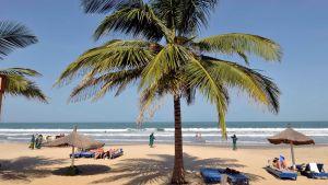 The Kombo Beach Hotel i Gambia.