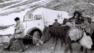 Ett barn på en häst bredvid en vit lastbil med Röda korsets och Röda halvmånens emblem.