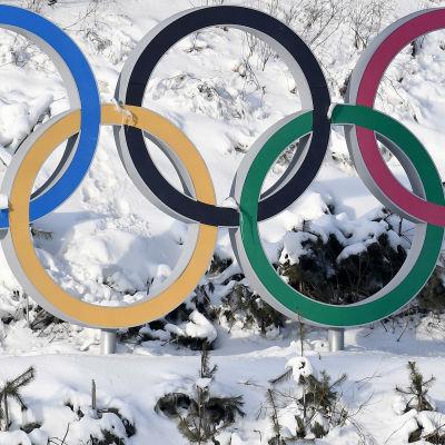 Pyeongchang i Sydkorea arrangerade senaste vinter-OS.