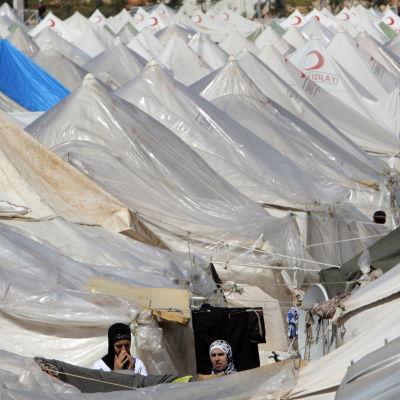 Tältläger för flyktingar.