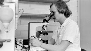 Nainen tutkii mikroskoopilla näytettä.