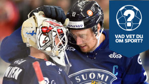 Finlands spelare firar på isen.