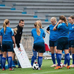 Finlands U17-flicklandslag i fotboll.