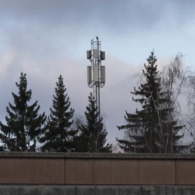 5g tukiasema telemastossa Helsingin Pakilassa.