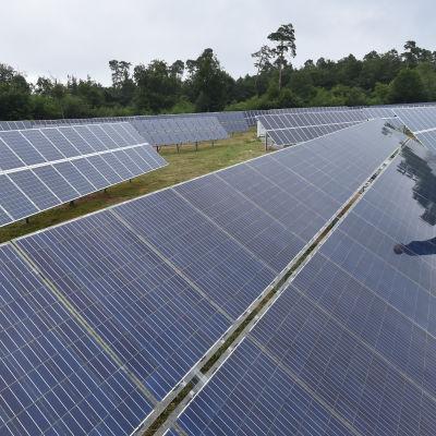 Del av Tysklands största solenergipark i Eggenstein/Leopoldhafen