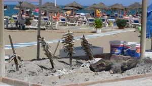Sardiinien grillausta rannalla