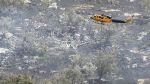 Brandfaran hög i Australien