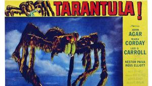 50-luvun elokuvajuliste, jossa on Tarantula-hämähäkki