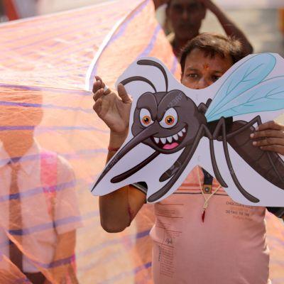 Aktivister protesterar i Kolkata i Indien mot myndigheternas brister i att skydda befolkningen mot malaria och dengue. Bilden är från november 2019.