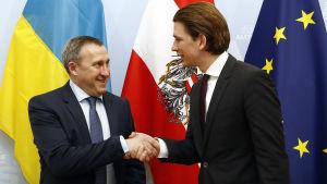 Österrikes utrikesminister Sebastian Kurz träffade sin ukrainske kollega Andrij Desjtjytsia i Wien i Österrike den 20 march 2014.
