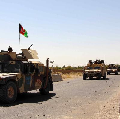 Regeringen säger sig ha skickat förstärkningar som redan har anlänt till Tarin Kot, provinshuvdustad i Uruzgan