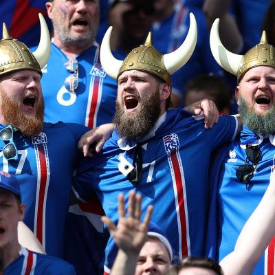 Bara glada islänningarna på läktaren i matchen mot Österrike.