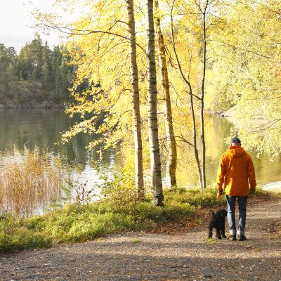 En man på promenad med sin hund längs en led invid en sjö