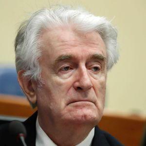 Radovan Karadžić inför kringsförbrytartribunalen i Haag i april 2016.