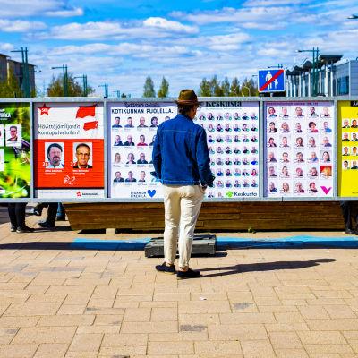 Mies katselee kuntavaalien mainoksia Torniossa.