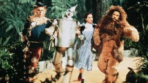 Judy Garland eli Dorothy sekä Variksenpelätin, Tinamies ja Leijona Hollywood-musikaalissa Ihmemaa Oz (1939). Yksi Elämää suuremmat elokuvat -radiosarjassa käsitellyistä elokuvista.