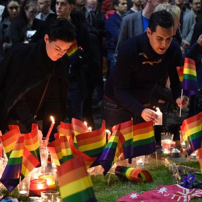 Två personer tänder ljus och placerar regnbågsflaggor bredvid flera regnbågsflaggor vid Taylor Square, i Sydney, Australien. Flera sydneybor samlades för en tyst solidaritetsdemonstration för offren i Orlando.
