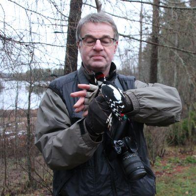 Lintuharrastaja Kimmo Martiskaisen käsissä on Kiteenjärven rannalla rengastettavaksi saatu käpytikka.