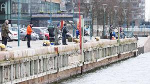 Män fiskar strömming från kajen i Gräsviken