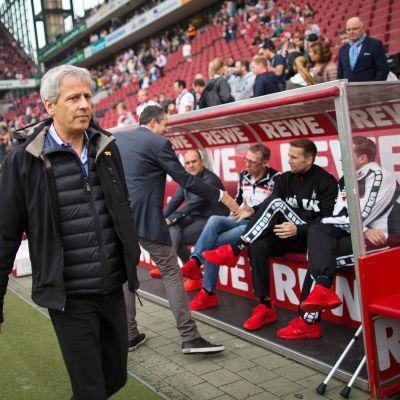 Lucien Favre går mot bänken under en Bundesligamatch.