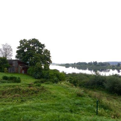 Vy över floden Njemen från den litauiska sidan mot Kaliningrad. Grönt och lantligt.