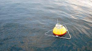 Pohjois-Itämeren poju mittaa aallokon korkeutta