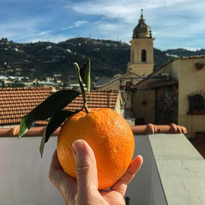 En hand håller upp en grann apelsin. I bakgrunden syns hustak och ett torn.