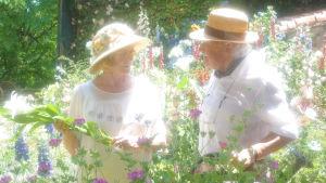 Nainen ja mies katsovat toisiaan keskellä korkeakukkaista niittyä.