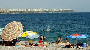 Människor och parasoll på strand