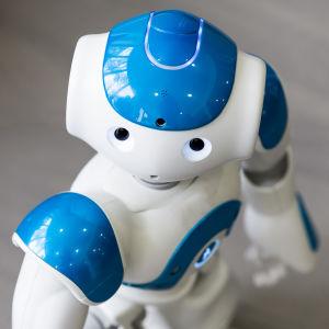 Sinivalkoinen sosiaalinen robotti katsoo kameraan