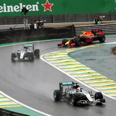 Lewis Hamilton, Nico Rosberg och Max Verstappen i Brasilien.