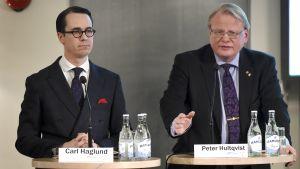 Finlands försvarsminister Carl Haglund (SFP) och Sveriges försvarsminister Peter Hultqvist