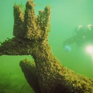 Merikotka-veistos ja sukeltaja veden alla Dalskär-saaren rantavesissä, Saaristomerellä.