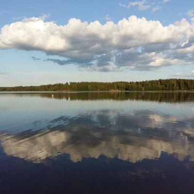 Moln och skogbeklädda stränder speglas i vattnet en sommarkväll.