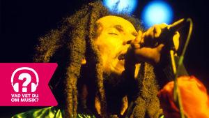 Bob Marley sjunger i en mikrofon.