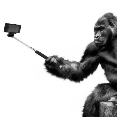 Gorilla ottaa selfiekepillä selfietä.